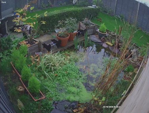 Day Pond